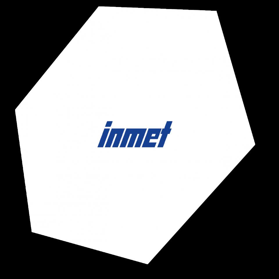 INMET Stahl GmbH & Co. KG - iT
